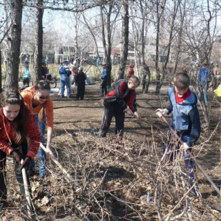 МОТ потребовала отменить принудительный труд и субботники в Беларуси