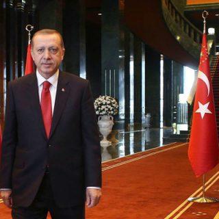 эрдоган-22