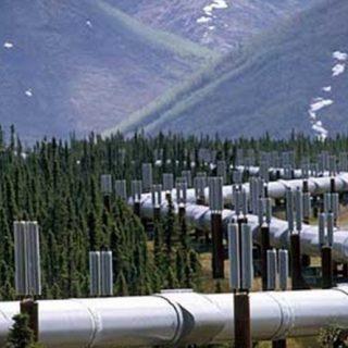 В Китае российский газ не ждут