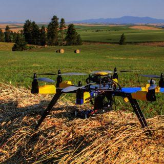 В ЕАЭС планируют снизить потери урожая с помощью цифровых технологий