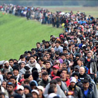 в каких странах ЕС беженцы ищут политического убежища?