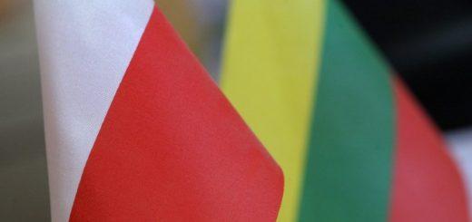 Литве из-за геополитического положения необходимо улучшить свои отношения с соседями, особенно с Польшей.