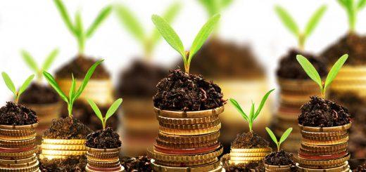 Дальний Восток предложит инвесторам из Сингапура 33 проекта на $15 млрд
