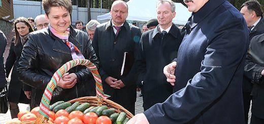 Президент Белоруссии будет реформировать сельское хозяйство, не называя это реформами.