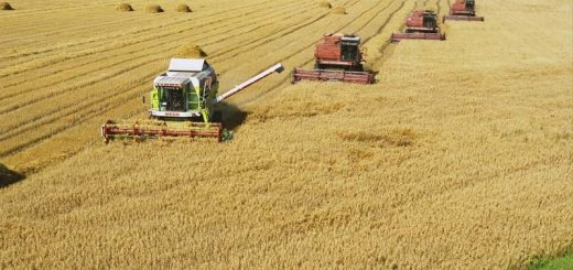 Иностранный бизнес приглядывается к российскому сельскому хозяйству.