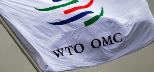В декабре и январе Белоруссия проведет специальные переговоры с Евросоюзом по поводу членства во Всемирной торговой организации.