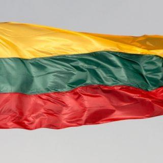 Огромное и негативное влияние на экономику Литвы, рынок труда и социальную жизнь оказывает продолжающаяся эмиграция населения.