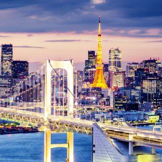 Насколько проект энергомоста из России в Японию интересен самой России?