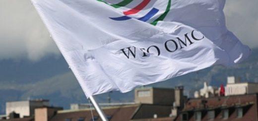Белоруссию готовы принять в ВТО