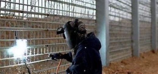 Страны Балтии активно занялись заборостроением – собираются отгородиться от России и Белоруссии.