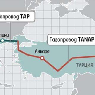 tanaptap1